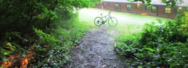 Trail 3 featured